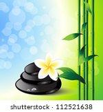 spa background | Shutterstock .eps vector #112521638