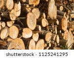 pile of firewood. firewood for... | Shutterstock . vector #1125241295
