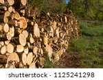 pile of firewood. firewood for... | Shutterstock . vector #1125241298