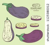 collection of eggplant  full... | Shutterstock .eps vector #1125380312
