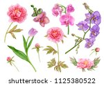 watercolor floral set  pink... | Shutterstock . vector #1125380522