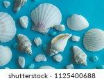 water shell art background   Shutterstock . vector #1125400688