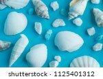 water shell art background   Shutterstock . vector #1125401312