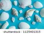 water shell art background   Shutterstock . vector #1125401315