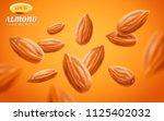 almond vector set  detailed... | Shutterstock .eps vector #1125402032