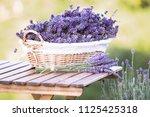 harvesting of lavender. a... | Shutterstock . vector #1125425318