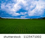 dark storm clouds before rain... | Shutterstock . vector #1125471002