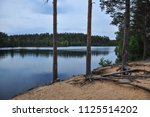 forest lake landscape with pine ...   Shutterstock . vector #1125514202