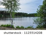 forest lake landscape with...   Shutterstock . vector #1125514208