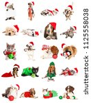 Set of twenty christmas themed...