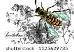 colored wasp on white... | Shutterstock .eps vector #1125629735
