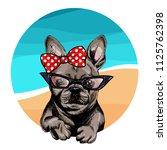 vector portrait of french... | Shutterstock .eps vector #1125762398
