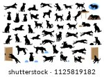 Stock vector different dogs silhouettes set pets walk sit play eat steal food bark protect run and jump 1125819182