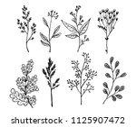set with leaves. botanical... | Shutterstock .eps vector #1125907472
