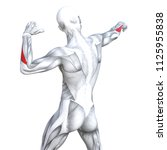 concept conceptual 3d... | Shutterstock . vector #1125955838