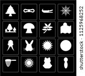 set of 16 icons such as cactus  ...