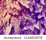 deep dark purple leaves pattern ... | Shutterstock . vector #1126023578