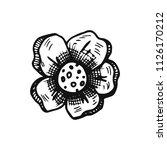 flower sketch vector. isolated... | Shutterstock .eps vector #1126170212