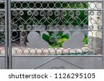 wrought iron gates  ornamental... | Shutterstock . vector #1126295105