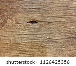 table rough surface wood.... | Shutterstock . vector #1126425356