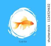 aquarium goldfish poster with... | Shutterstock .eps vector #1126524632