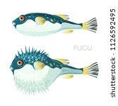 fugu fish japanese puffer fish... | Shutterstock .eps vector #1126592495