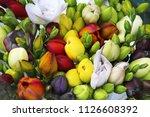 tremendous bouquet of fresh...   Shutterstock . vector #1126608392