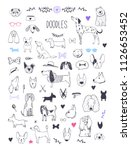 Stock vector hand drawn vector dog sketches and doodles 1126653452