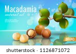 realistic 3d macadamia nut oil... | Shutterstock .eps vector #1126871072