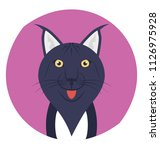 feline  a cat or other member... | Shutterstock .eps vector #1126975928