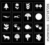 set of 16 icons such as berry ...