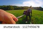 lens flare  pov stubborn black...   Shutterstock . vector #1127450678