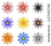 pattern flower five petal set... | Shutterstock .eps vector #1127652785