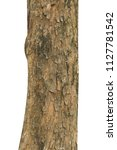 tree trunk isolated on white...   Shutterstock . vector #1127781542
