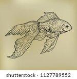 beautiful hand draw goldfish ... | Shutterstock .eps vector #1127789552
