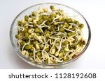 healthy mung sprouts | Shutterstock . vector #1128192608
