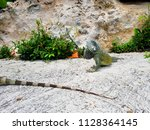 green lizard or reptile also... | Shutterstock . vector #1128364145