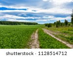 dirt road through the meadow | Shutterstock . vector #1128514712