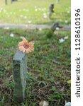 the japanese cemetery park in... | Shutterstock . vector #1128610196