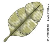 leaf plant ecology icon