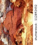 abstract bark background 3