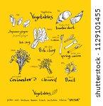 hand drawn food ingredients  ...   Shutterstock .eps vector #1129101455