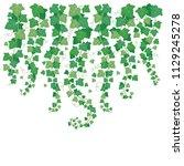 dangling green ivy. plants leaf ... | Shutterstock .eps vector #1129245278