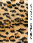 brown leopard fur pattern....   Shutterstock . vector #1129657628