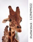 tall reticulated giraffe... | Shutterstock . vector #1129699022