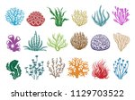 seaweeds and corals on white.... | Shutterstock .eps vector #1129703522
