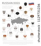 dogs by country of origin.... | Shutterstock .eps vector #1129731236