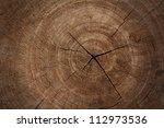 Tree Stump Texture Background