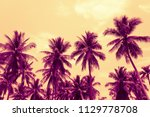 coconut palm trees   tropical... | Shutterstock . vector #1129778708