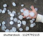 Big Hail Fell On The Lawn.